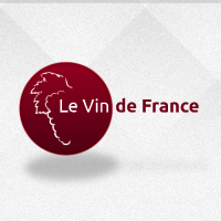 Logo de la startup Le Vin de France