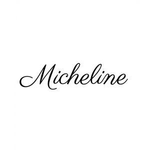 Logo de la startup Micheline