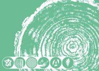 Logo de la startup blumen