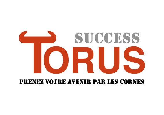 Logo de la startup Success Torus