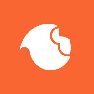 Logo de la startup Braineet