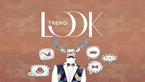 Logo de la startup Looktrend