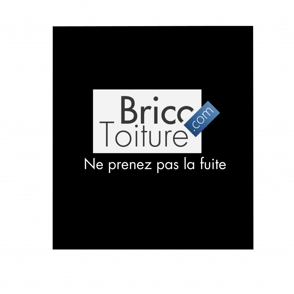 Logo de la startup Brico-Toiture