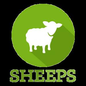 Logo de la startup Sheeps