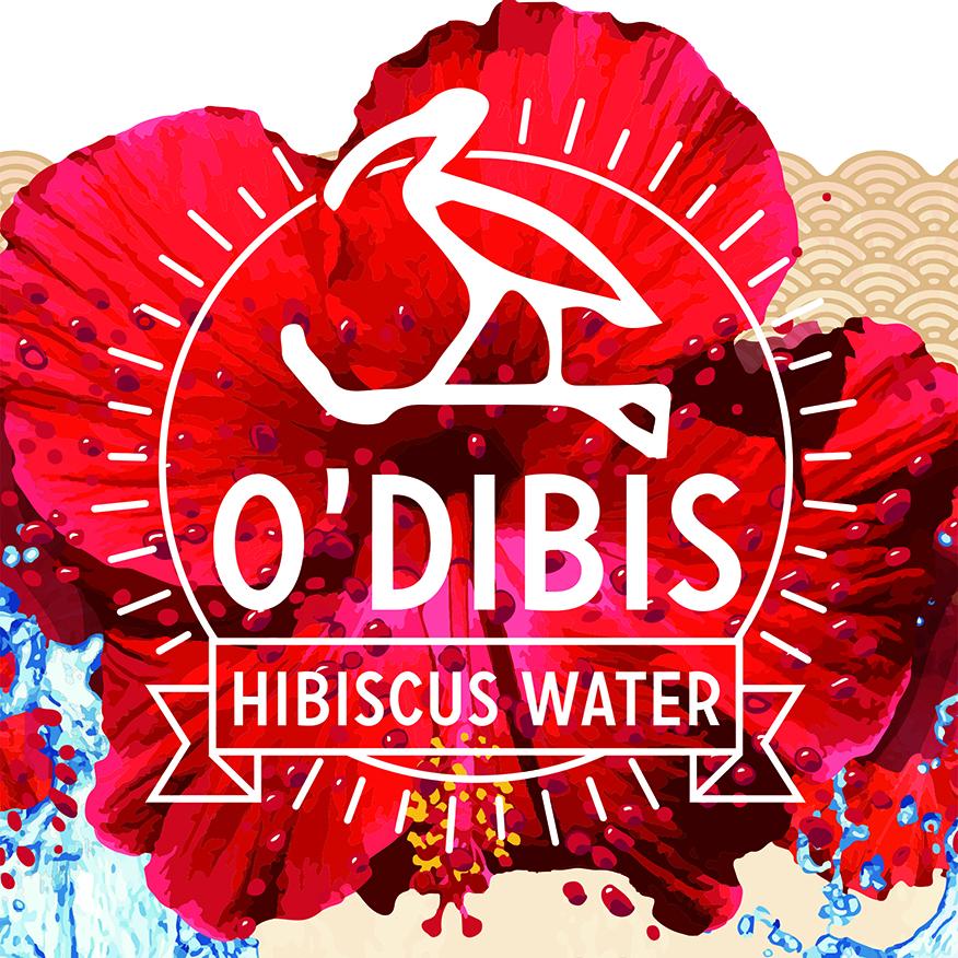 Découvrez la startup O'DIBIS - J'aime les startups