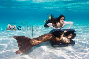 Logo de la startup eShipp