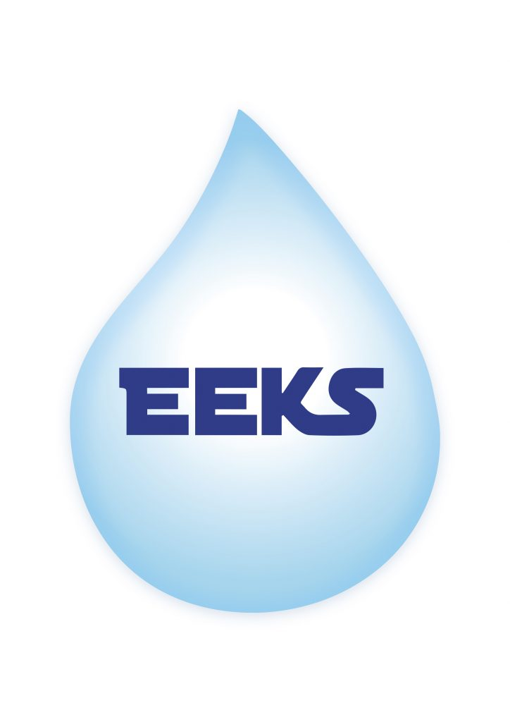 Logo de la startup eeks