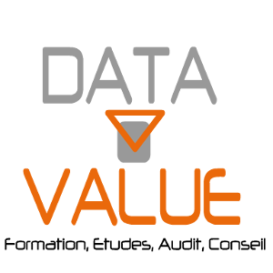 Logo de la startup DATA VALUE
