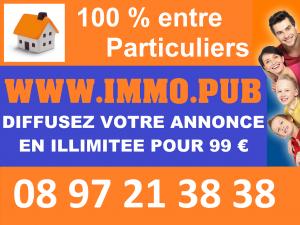 Logo de la startup Immo pub