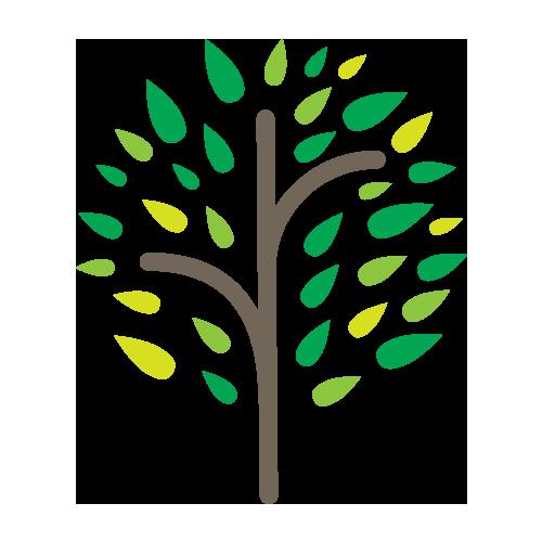Logo de la startup iroko project