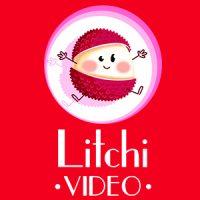 Logo de la startup Litchi Video