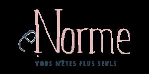 Logo de la startup eNorme