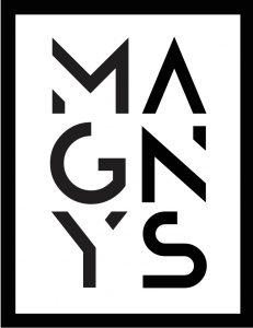 Logo de la startup MAGNYS