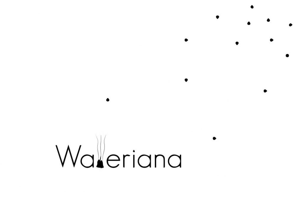 Logo de la startup Walleriana