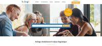 Logo de la startup Holingo