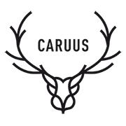 Logo de la startup CARUUS