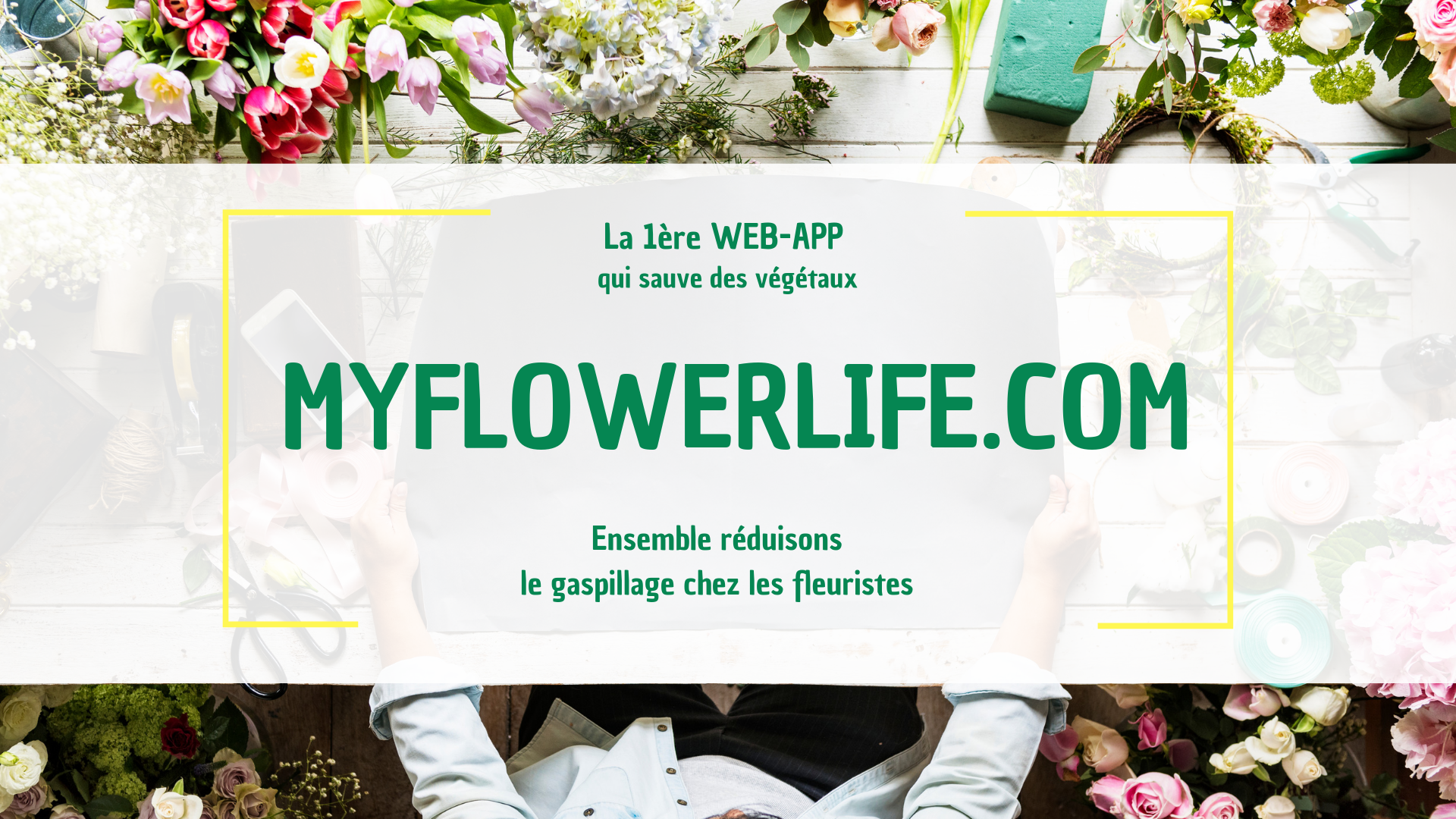Logo de la startup MY FLOWER LIFE