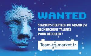 Logo de la startup Team-to-Market fr