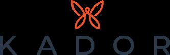 Logo de la startup  KADOR - bâtisseurs de nouveaux business