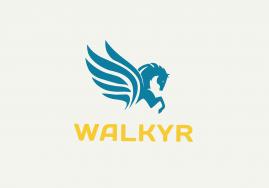 Logo de la startup Walkyr