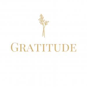 Logo de la startup Gratitude