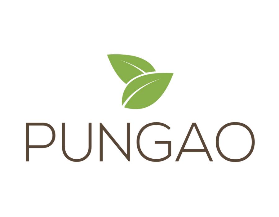 Logo de la startup Pungao