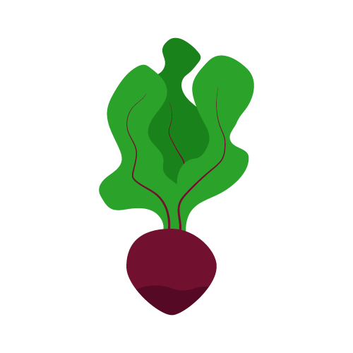 Logo de la startup Lioca
