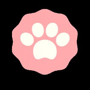 Logo de la startup SalonBichon