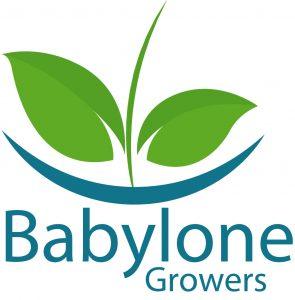 Illustration de la news L'agritech Babylone Growers lève 2 millions d'euros