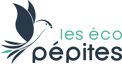 Logo de la startup Les Eco Pépites
